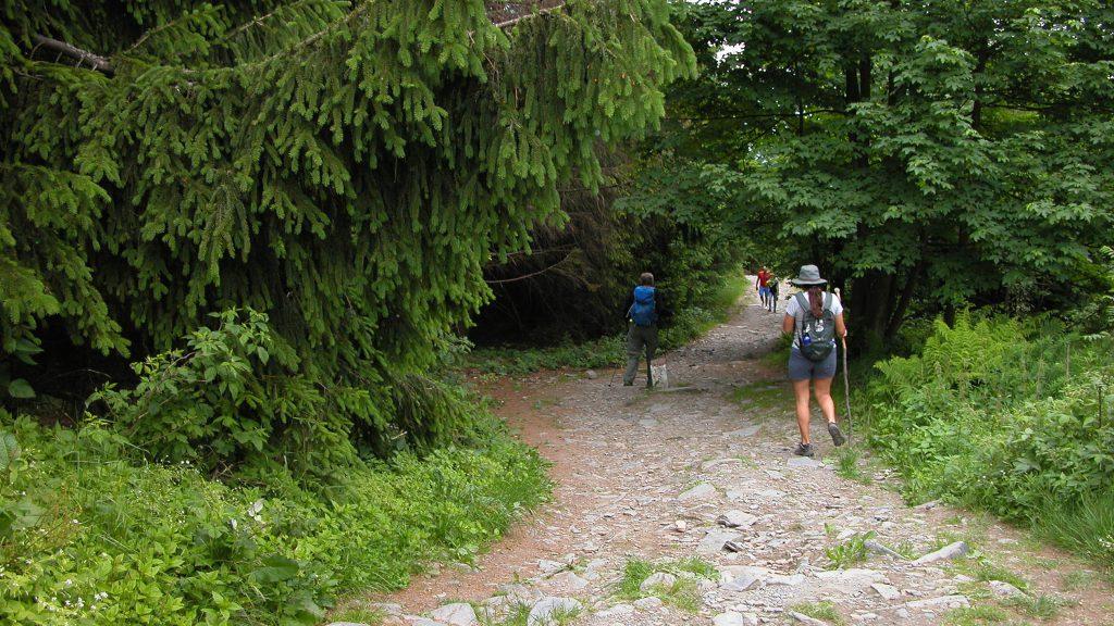Hiking downhill