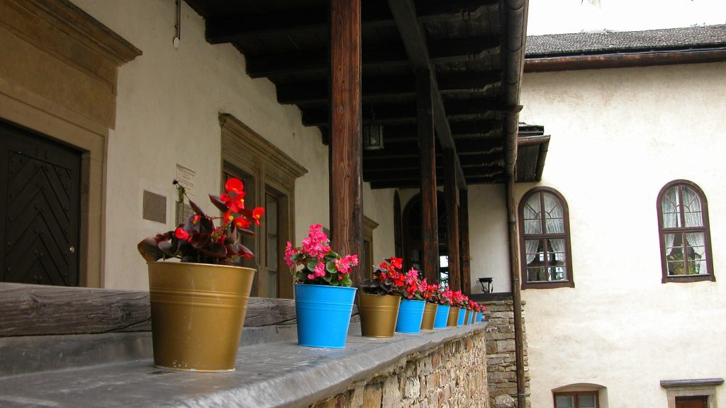 Some flowers in the courtyard of Niedzica Castle