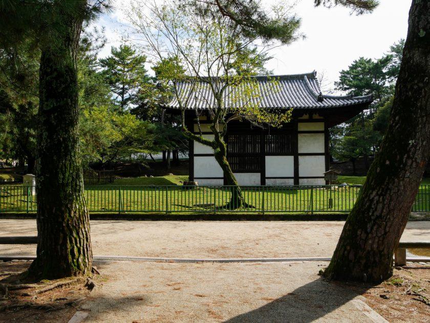 Nara Park Japan