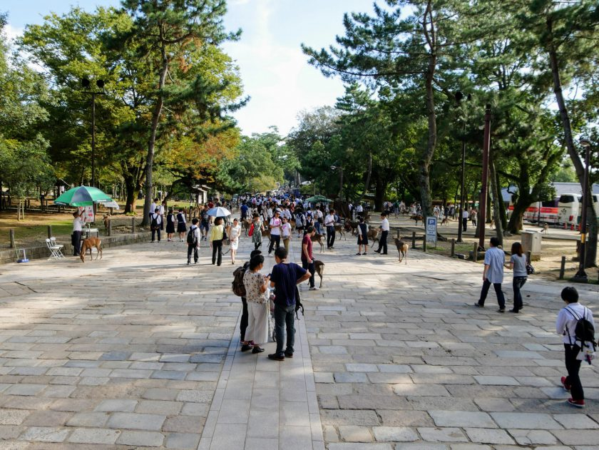 Crowds gather at the entrance to Todaiji Temple