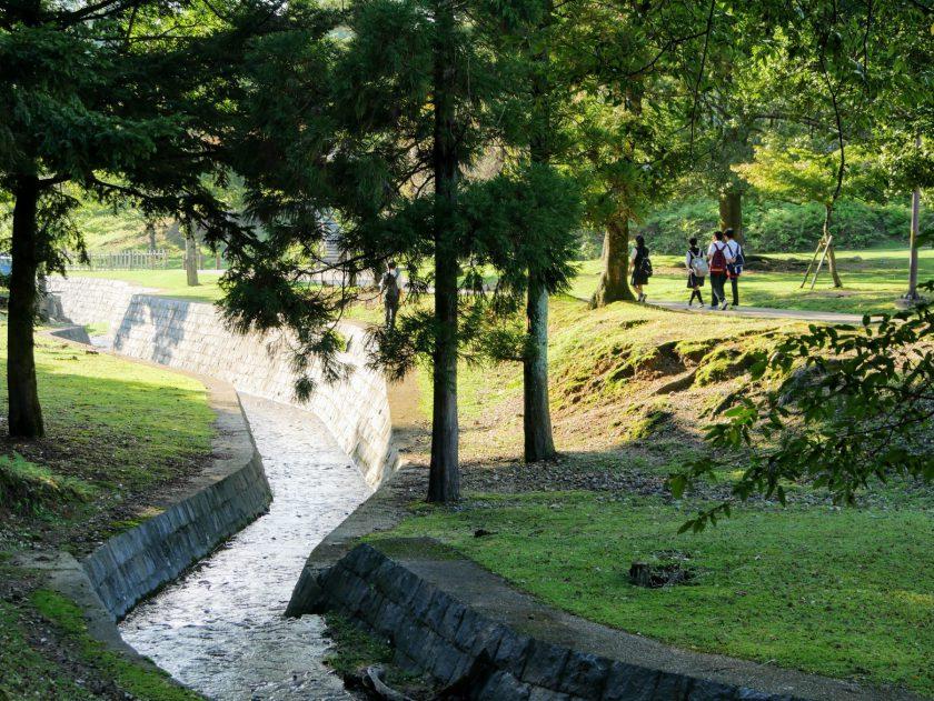 Foot paths of Nara Park