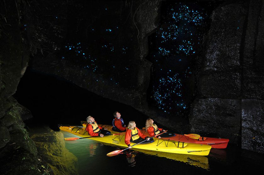Glowworm Caves, New Zealand