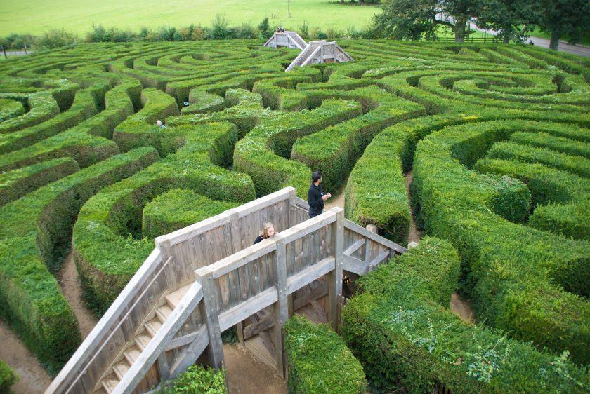 Longleat Hedge Maze, England